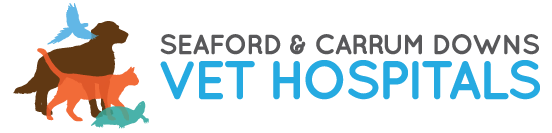 Seaford & Carrum Downs Vet Hospitals